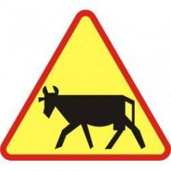 A-18a Znak Zwierzęta Gospodarskie