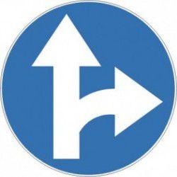 Znak C-6 Nakaz Jazdy Prosto lub w Prawo